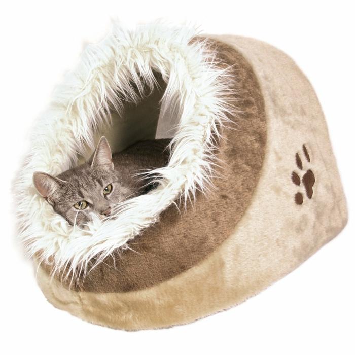 les chats aiment sans doute ce type d'abri