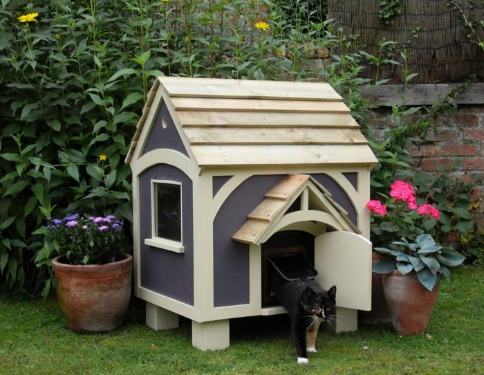 chat maisonnette extérieure