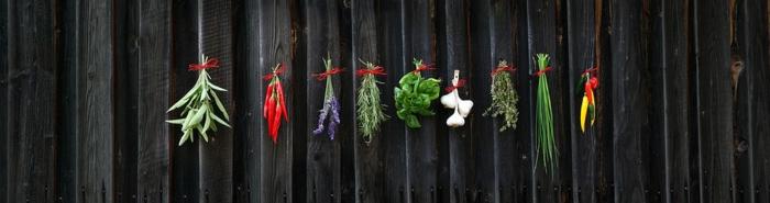 Herbes aromatiques idées