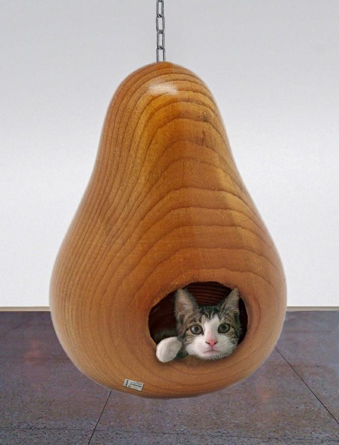 un chat qui se sent bien dans ce superbe abri pendu