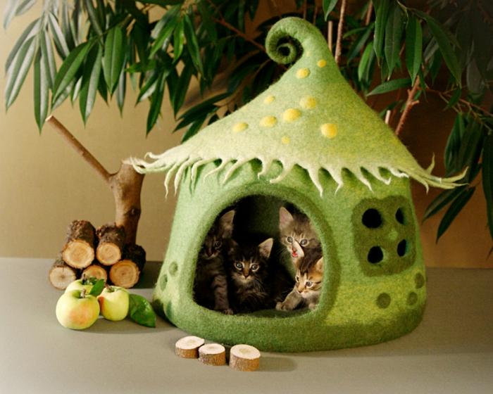 maisonnette pour chatons verte