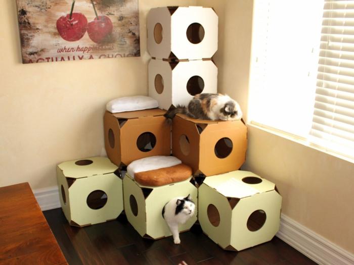 maison de chats en forme de cube