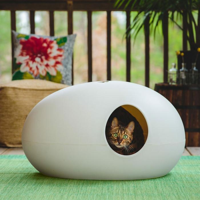 en premier lieu les maisons à chat en forme ovoïde sont très confortables