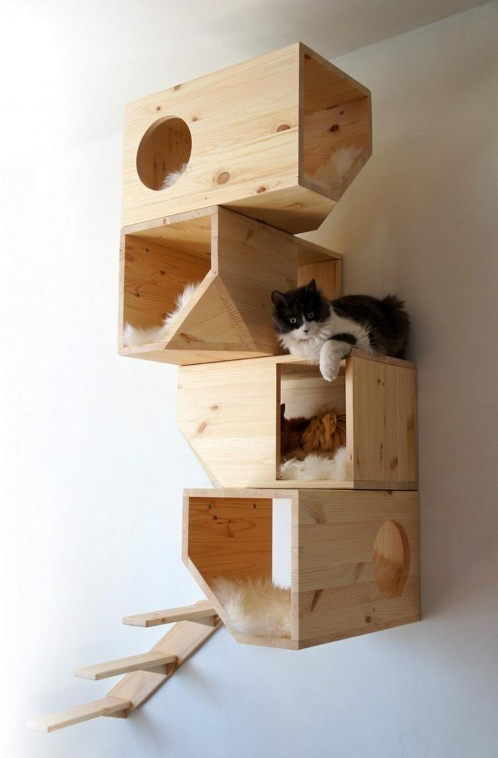 habitat mural pour chats