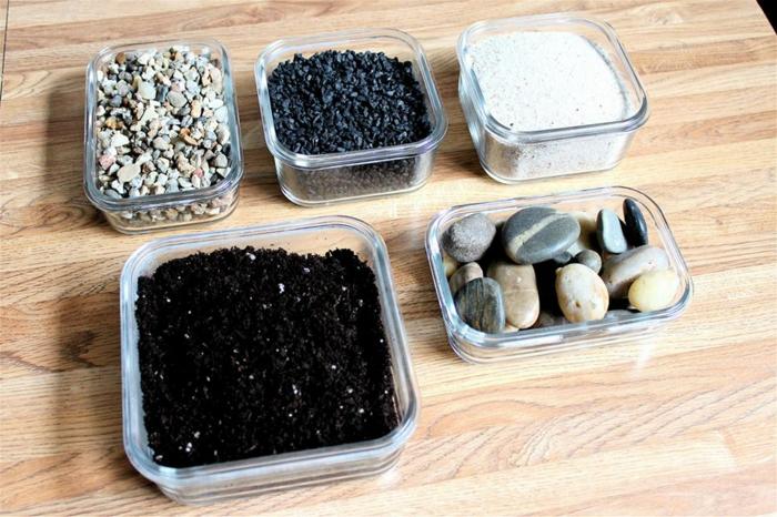 pour faire un terrarium plante diy