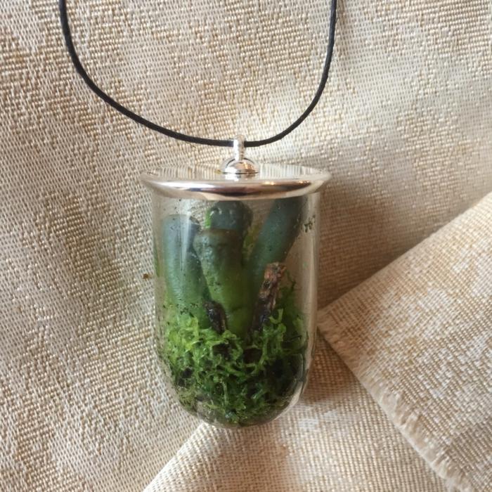 terrarium sous la forme d'un bijoux