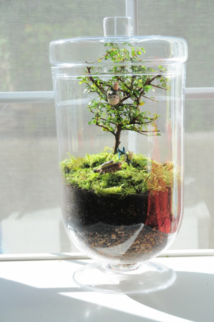 diy faire son propre terrarium plante pour d corer la maison. Black Bedroom Furniture Sets. Home Design Ideas