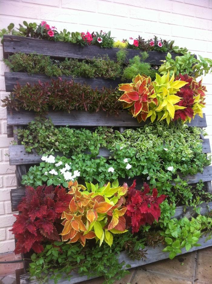 fleurs plantées dans un jardin vertical en palette