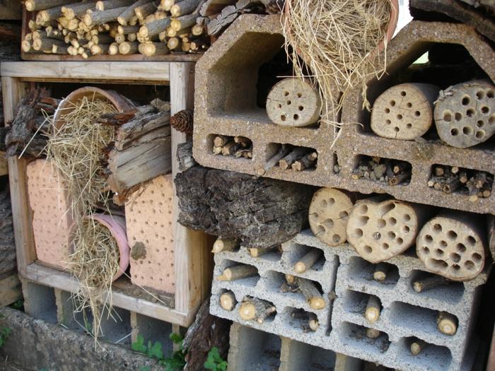 gîte pour insectes