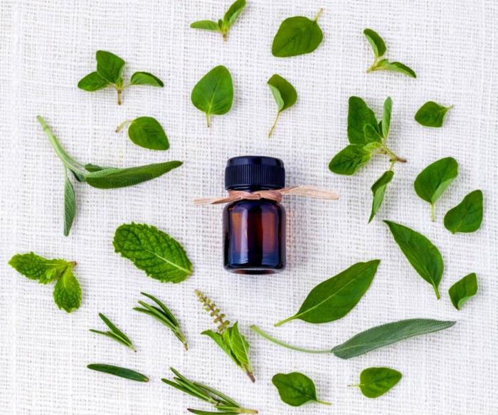 huiles essentielles shampong naturel feuilles verts