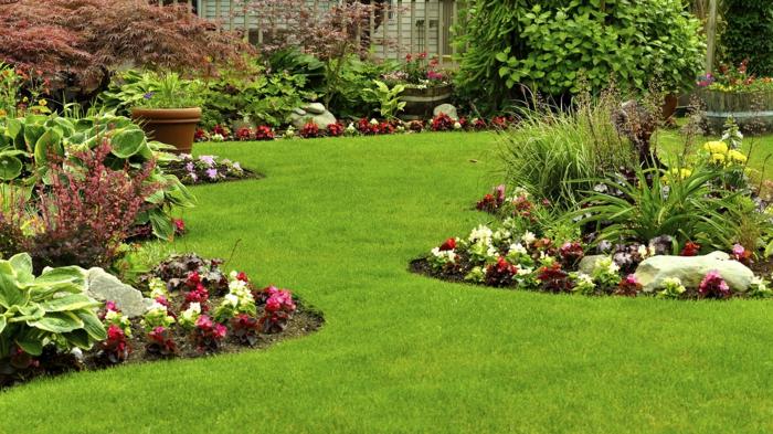beau jardin avec pelouse
