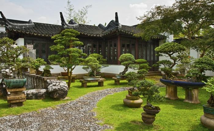 jardin feng shui avec une allée de pierres et des bonzais