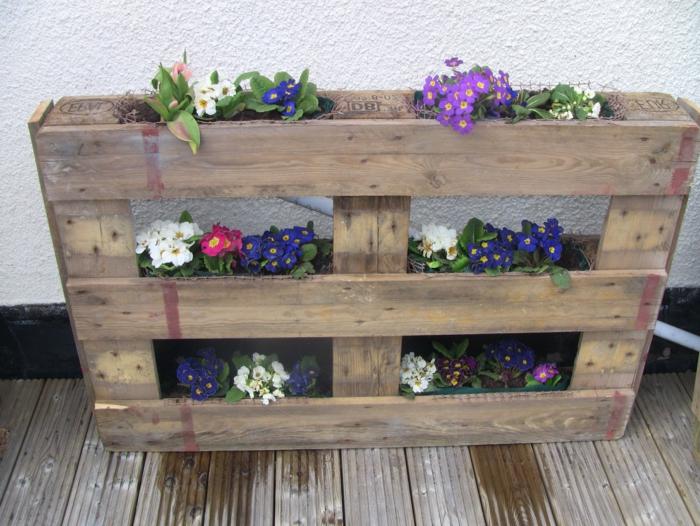 jardin en palette avec des fleurs de printemps