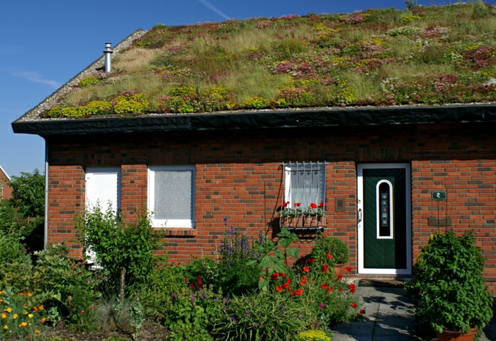 par exemple c'est une maison avec un jardin sur le toit