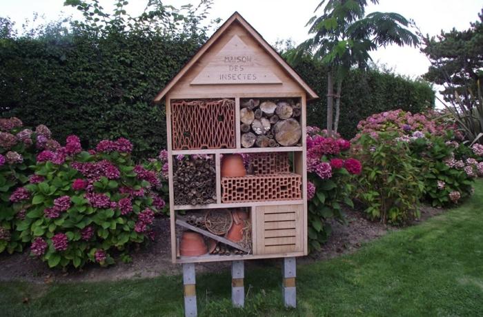 par exemple c'est une une maison des insectes