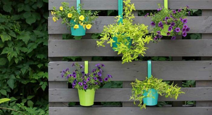 mur végétal en palette avec des pots