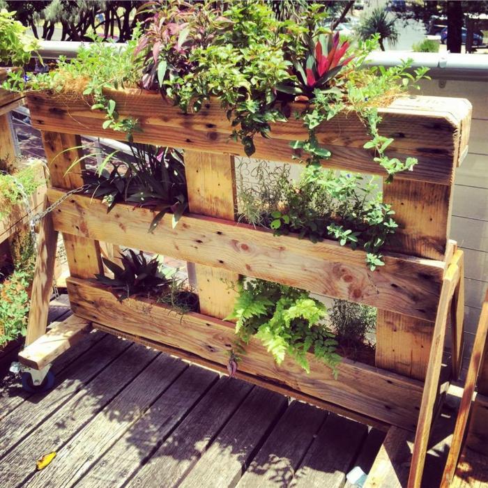mur végétal de style rustique