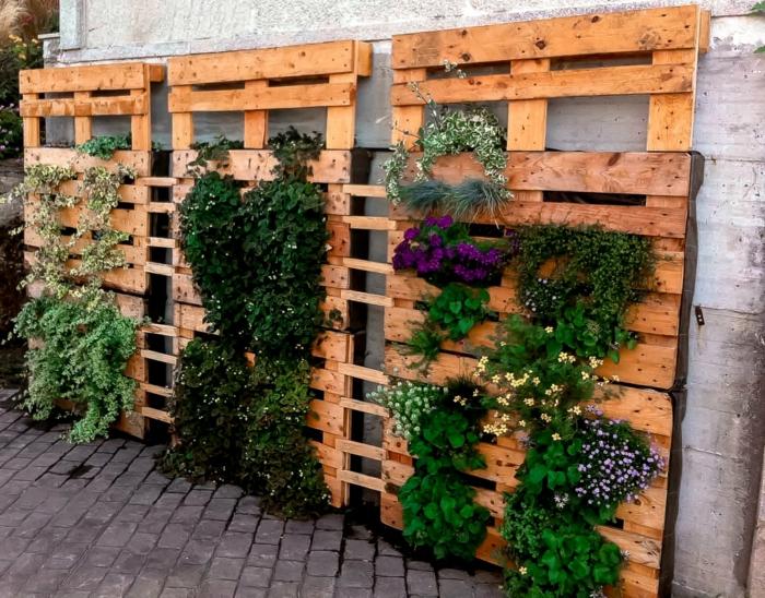 par exemple c'est un mur vertical avec des plantes
