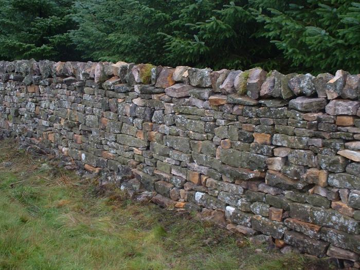 par exemple c'est une palissade construite de pierres naturelles
