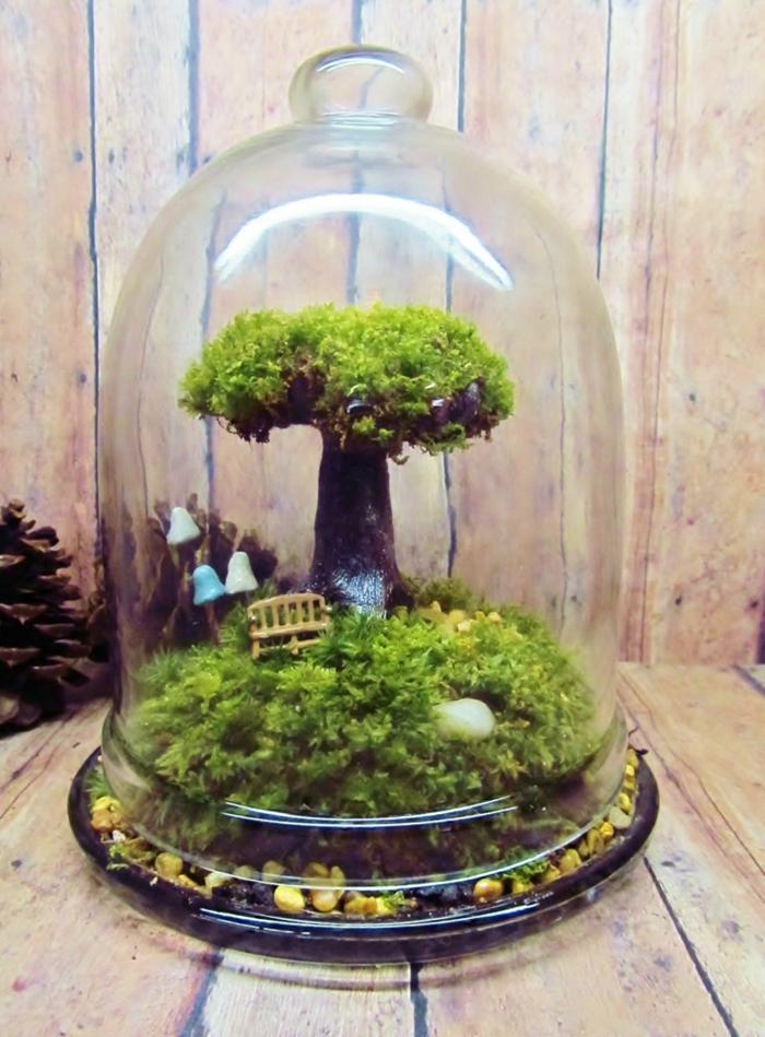 un petit banc dans le terrarium