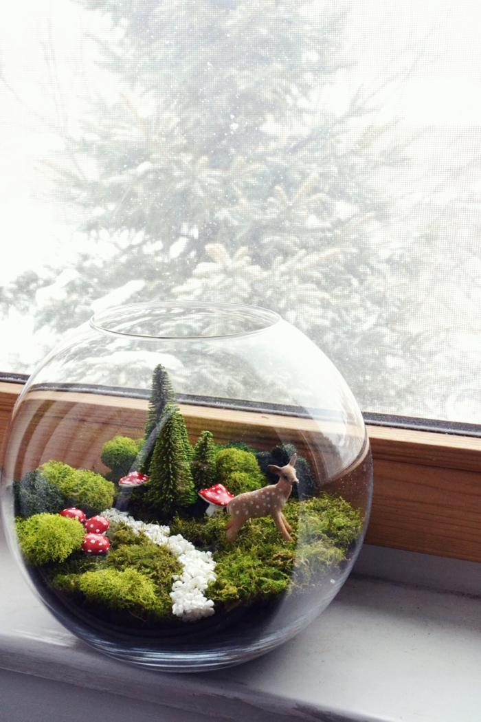 un très joli terrarium