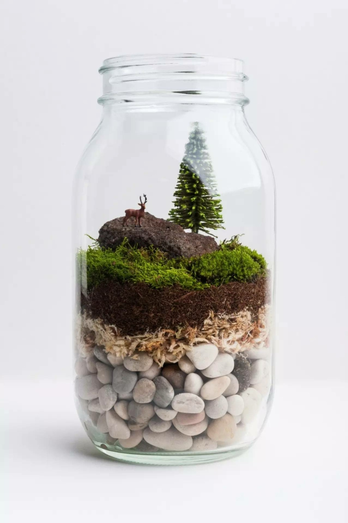 terrarium plante faire décoration pour la maison
