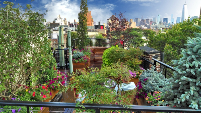 par exemple c'est une toiture moderne avec jardin