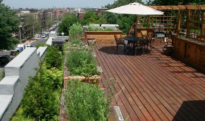 par exemple c'est une toiture verte