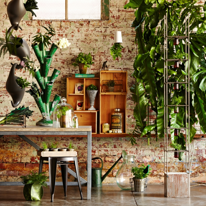 plantes absorbant les composés toxiques dans l'air