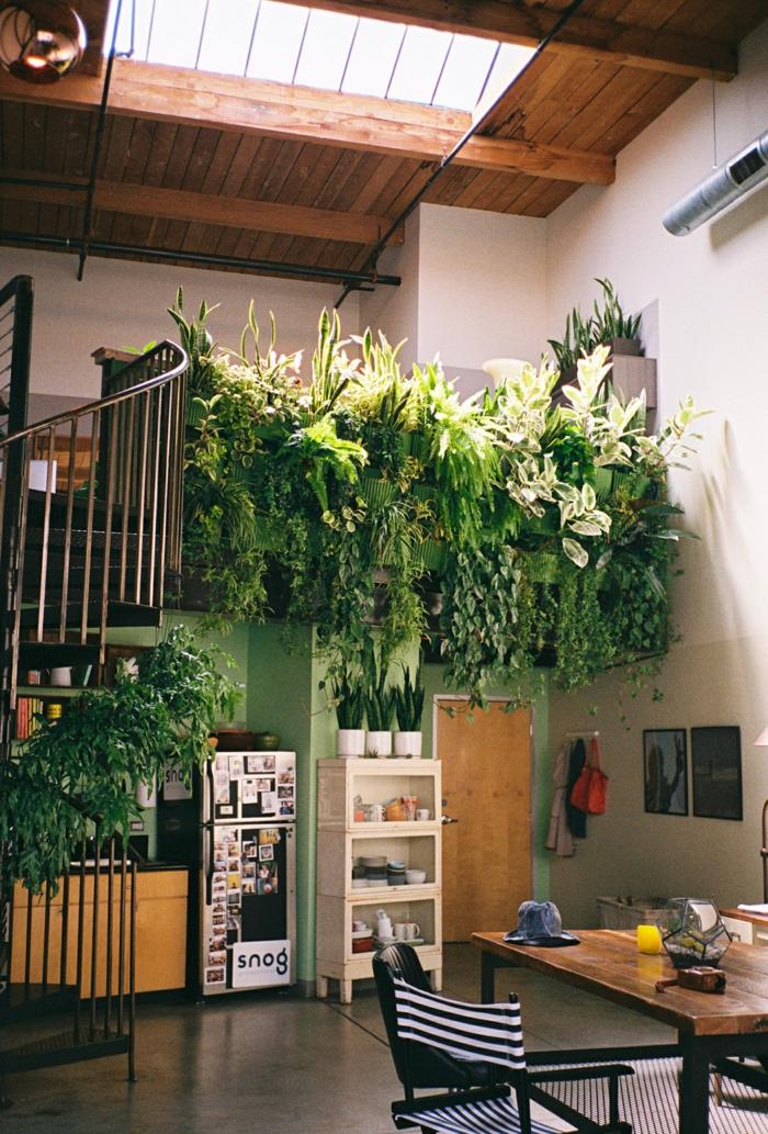 utilisez des plantes contre la pollution