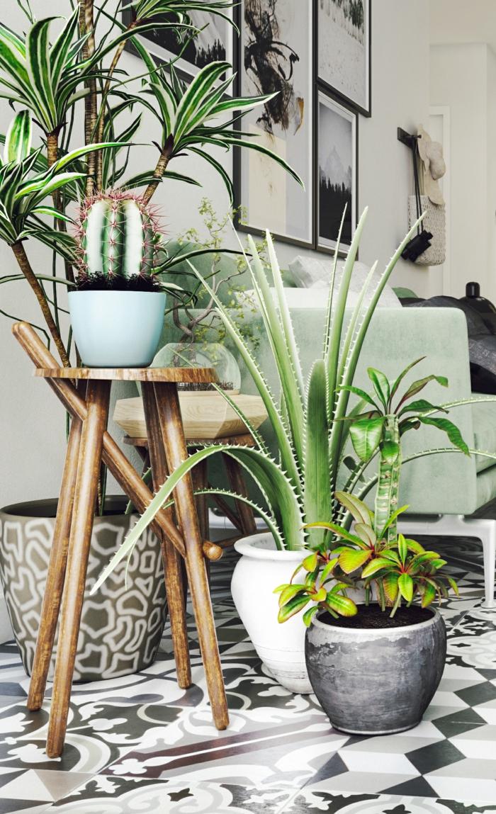 c'est bien que des plantes dépolluantes soient présents dans l'intérieur