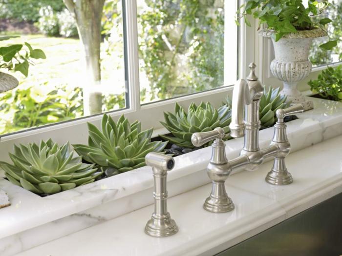 les plantes dans l'intérieur purifient l'air
