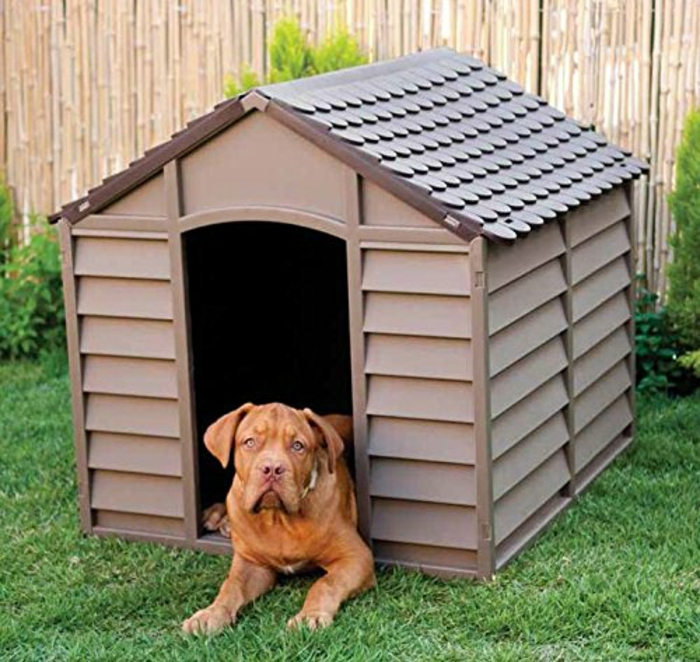 niche pour chien