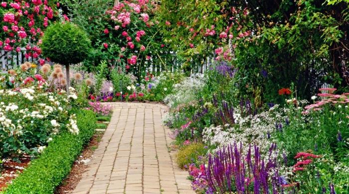 allée dans un jardin à l'anglaise