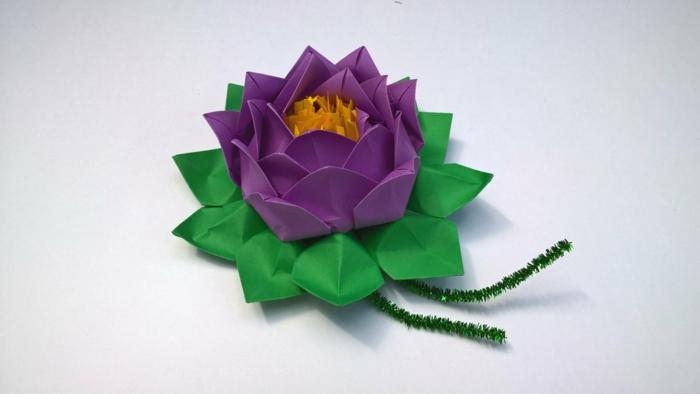 fleur voilet