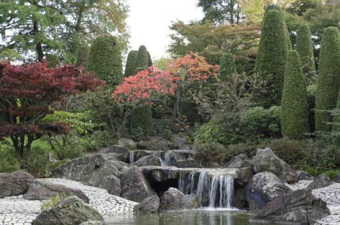jardin de rocaille arbres et arbustes