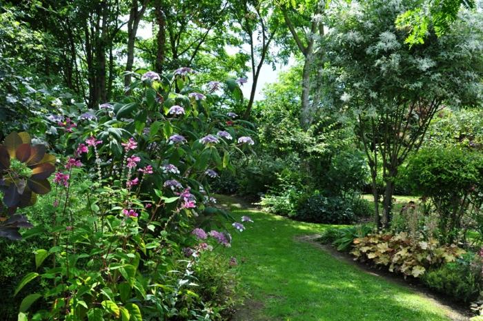 jardin anglais typique