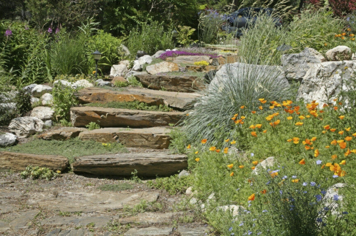 jardin pierres