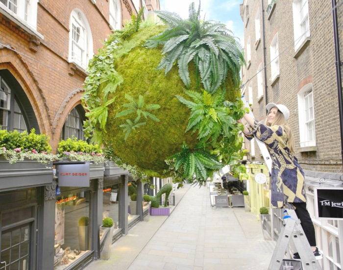 kokedama géant london
