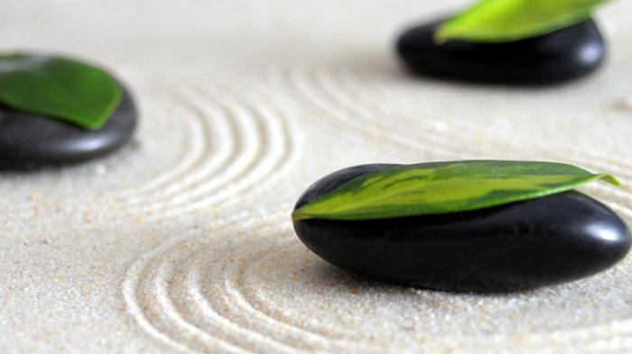Diy un jardin zen miniature pour d corer la pi ce et relaxer for Accessoire pour jardin zen