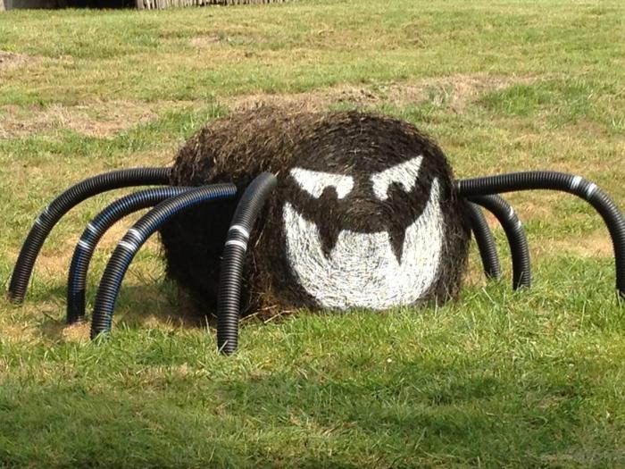 araignée halloween déco