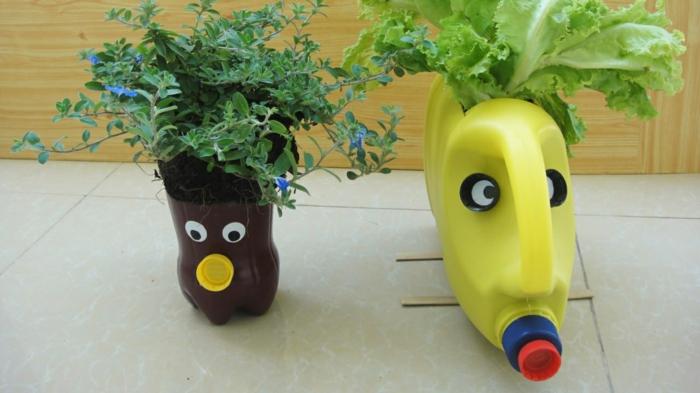 cultiver des plantes dans une bouteille plastique