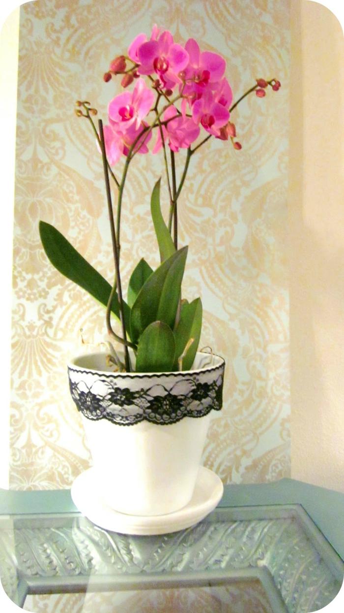 décoration tendance dentelle pour pot d'orchidée