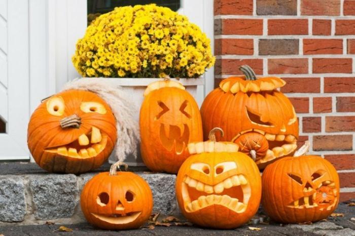 fête des citrouilles halloween