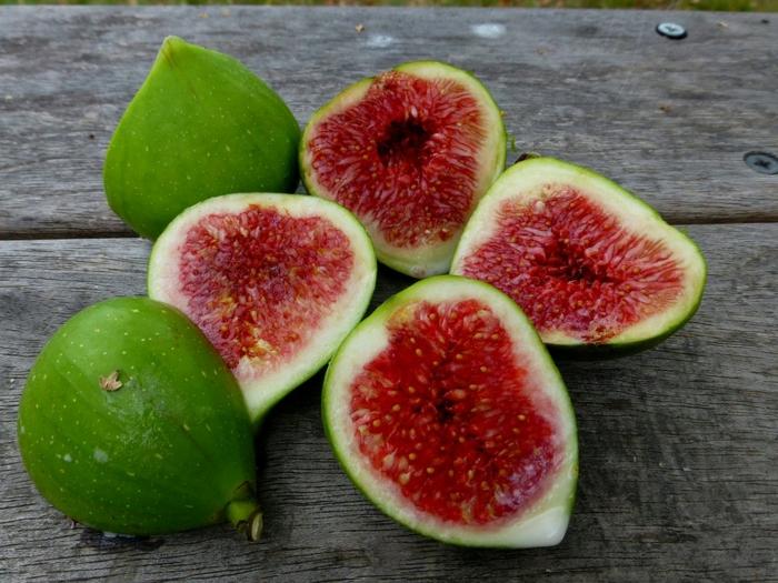 fruits de figue