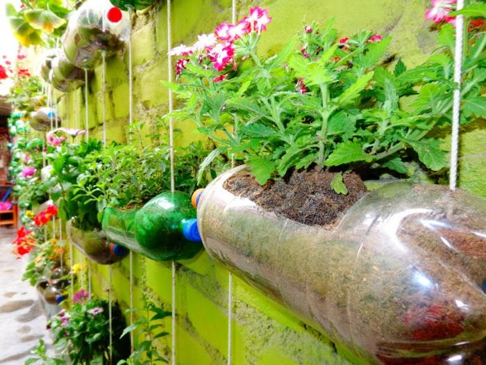 jardinage verticale bouteille plastique