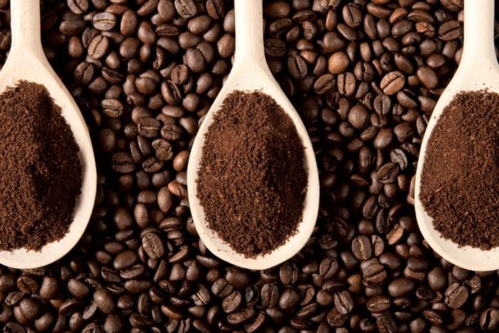 marc de café conseils