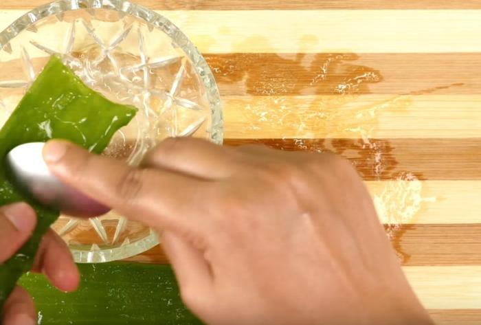 plante aloe vera gel