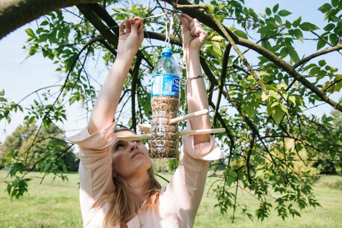 pour des oiseaux bouteille plastique