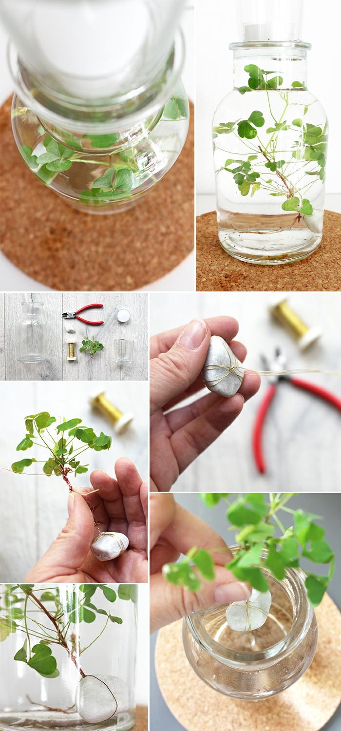 idée comment créer jardin avec plante aquatique